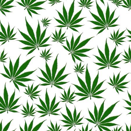 마리화나의 무리는 무리가 잎 흰색 배경에 고립