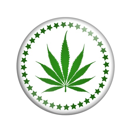 A white button marijuana leaf isolated on a white background, Like marijuana  button photo
