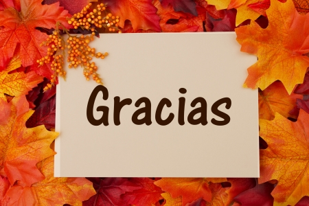 Gracias card with fall leaves, thankful at Thanksgiving Stock Photo