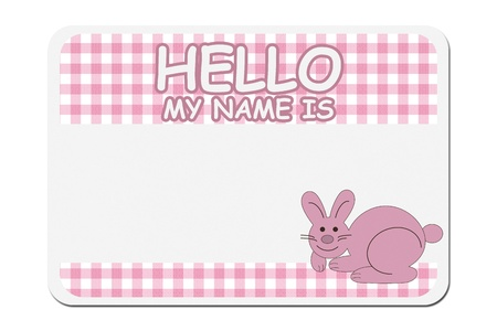 naming: A pink gingham hello my name is tag isolated over white, Naming your baby girl