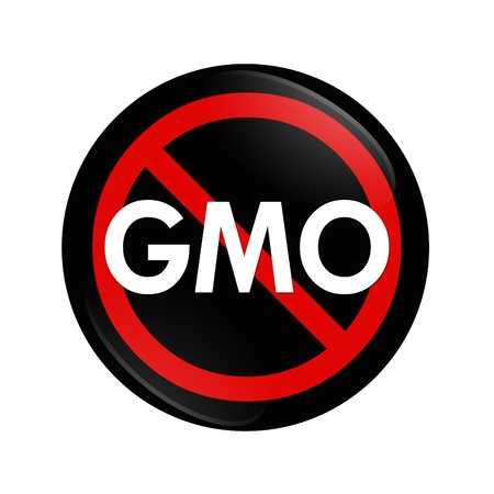 genetically modified: A black and red button with word GMO and not symbol isolated on white, Stop using GMO food