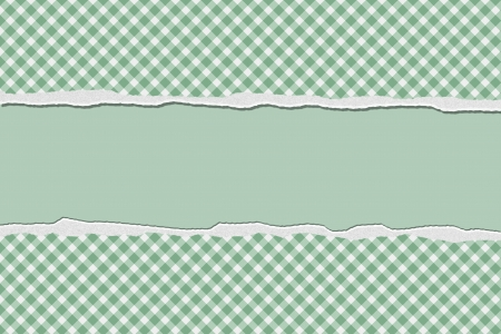 Green Gingham Torn  Background for your message or invitation with copy-space in the middle photo