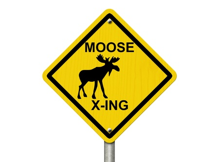 xing: An warning sign isolated on white with moose symbol and words moose xing, Use caution moose are present