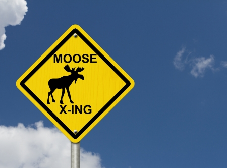 An warning sign with blue sky with moose symbol and words moose xing, Use caution moose are present photo