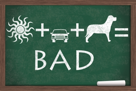 psa: Equation about not to leave your pet in a car on a hot day