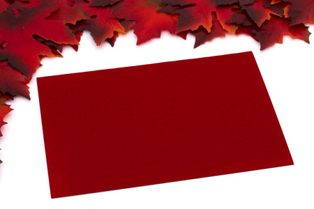 Red Autumn Leaves with a blank red card for copy-space isolated on white background, Autumn Time Message photo