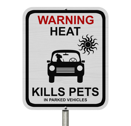 Dangers of leaving a dog in parked cars, A white road sign with the message of the danger isolated over white Stock Photo - 25296375