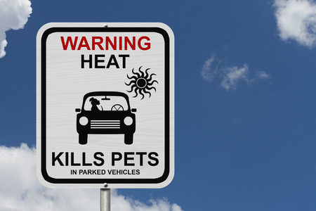 Dangers of leaving a dog in parked cars, A white road sign with the message of the danger with blue sky 写真素材
