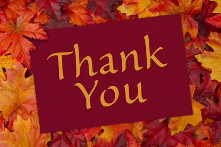 caes: Una tarjeta de agradecimiento, una tarjeta roja con las palabras de agradecimiento a través de la hoja de arce rojo y naranja