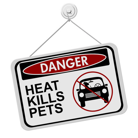 dead dog: Dangers of leaving a dog in parked cars, A red and black danger sign with the words HEAT KILLS PETS isolated on a white background Stock Photo