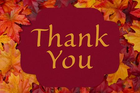 caes: Tarjeta roja con las palabras de agradecimiento sobre la hoja de arce rojo y fondo naranja