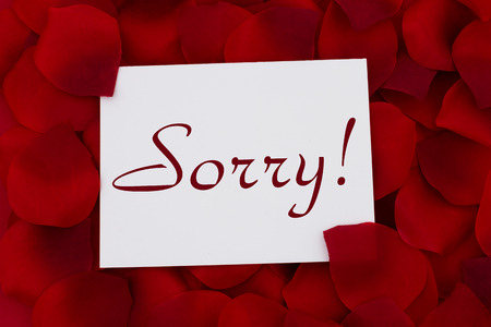 I am sorry card, A white card with text Sorry! and a red rose pedal backgrounds photo