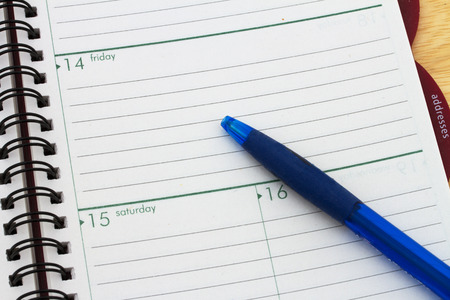 organizer page: Planning your day, A day blank day planner with a blue pen