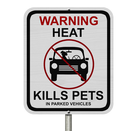 danger: Dangers of leaving a dog in parked cars, A white road sign with the message of the danger isolated over white
