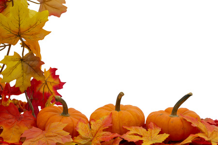Colorful Fall Border, Three small pumpkins on fall leaves isolated on white Stock Photo