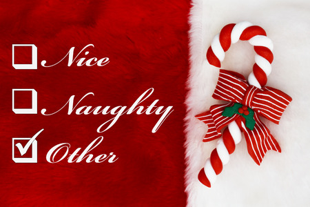 Naughty, Nice or Other,  A plush red stocking with a Candy Cane and words Nice, Naughty and Other photo