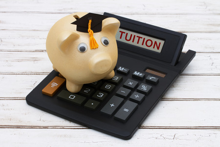 fees: Calculating your tuition fees, A golden piggy bank with a grad hat on a calculator with word Tuition  over a distressed wood background