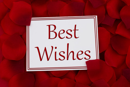 best: Best Wishes Card, A white card with text Best Wishes and a red rose pedal backgrounds