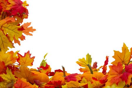 calabaza: Hojas de otoño y calabazas fondo, las hojas de otoño y calabazas aislados en blanco con espacio para su mensaje Foto de archivo