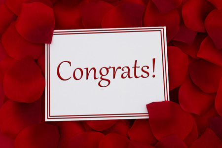 congrats: Congrats Card, A white card with text Congrats and a red rose petal backgrounds Stock Photo