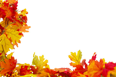 bordure de page: Autumn Leaves Background isol� sur fond blanc Banque d'images