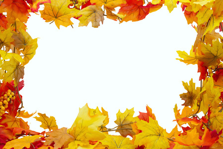 Autumn Leaves Background, Autumn Leaves isolated on white with space for your message Stock Photo