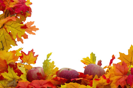fall leaf: Autumn Leaves and Apples Background, Autumn Leaves and Apples isolated on white with space for your message