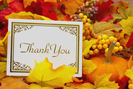 greeting cards: Thank You, Autumn Leaves with sky background with text Thank You