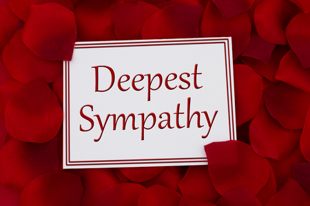 sympathy: Deepest Sympathy Card, A white card with text Deepest Sympathy and a red rose petal backgrounds