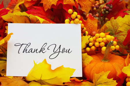 Thank You, Autumn Leaves with sky background with text Thank You