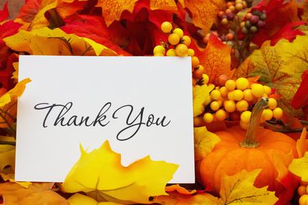 merci: Merci, Autumn Leaves avec fond de ciel avec le texte Merci