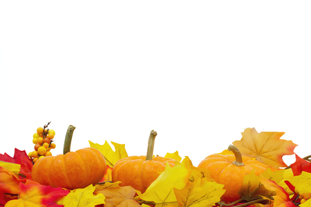 overwhite: Autumn Time Background, Autumn Leaves and Pumpkins isolated on white with space for your message