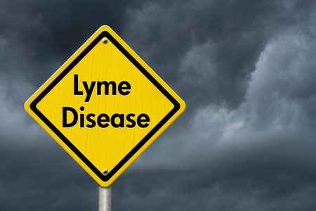 lyme: Lyme Disease Warning Road Sign, Yellow Caution sign with words Lyme Disease with stormy sky background