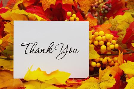 caes: Gracias, Hojas de oto�o con una tarjeta de agradecimiento