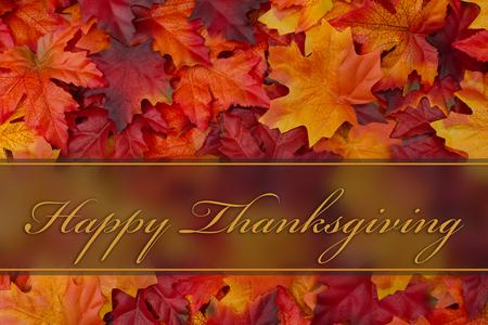 accion de gracias: Feliz felicitación de la acción de gracias, caída deja el fondo y el texto Happy Thanksgiving