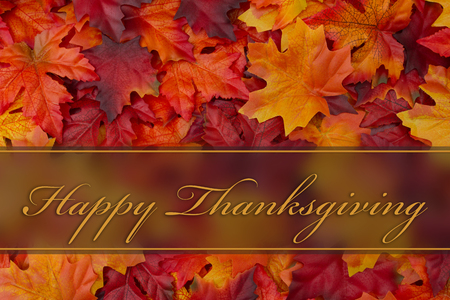 Happy Thanksgiving Greeting, Fall Leaves Background and text Happy Thanksgiving 免版税图像 - 48175803