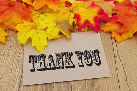 caes: Gracias cardar, Hojas de otoño con una tarjeta de felicitación de color beige con el texto Gracias