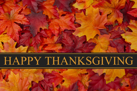 autumn: Happy Thanksgiving Greeting, Fall Leaves Background and text Happy Thanksgiving