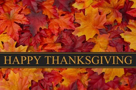 glücklich: Happy Thanksgiving Gruß, Fall lässt Hintergrund und Text Happy Thanksgiving