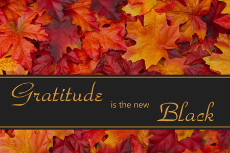 gratitude: Gratitude Message, Fall Leaves Background and text Gratitude is the new Black