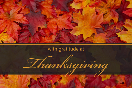 Happy Thanksgiving Greeting, Fall Leaves Background and text with gratitude at Thanksgiving