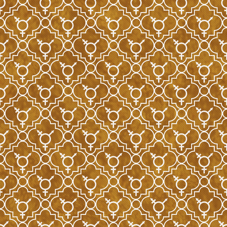 transgender: Orange and White Transgender Symbol Tile Pattern Repeat Background that is seamless and repeats