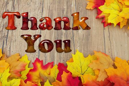 caes: Gracias, caen las hojas sobre un fondo de madera apenado con el texto Gracias Foto de archivo