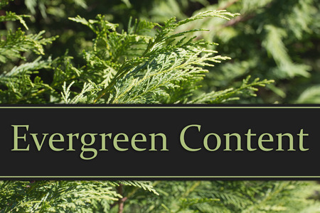 evergreen: Evergreen Content Message, Evergreen Background and text Evergreen Content Stock Photo