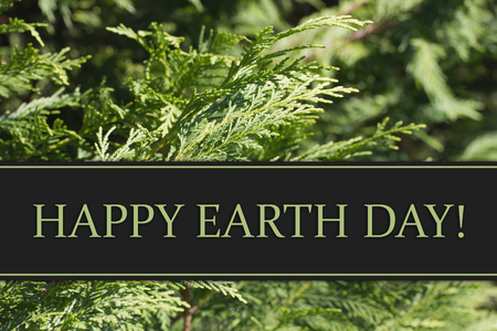 Evergreen Background with text Happy Earth Day