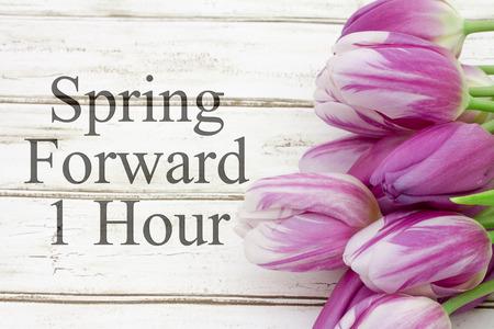 � spring: Algunos tulipanes con la madera y el texto resistido resorte adelante 1 Hora Foto de archivo