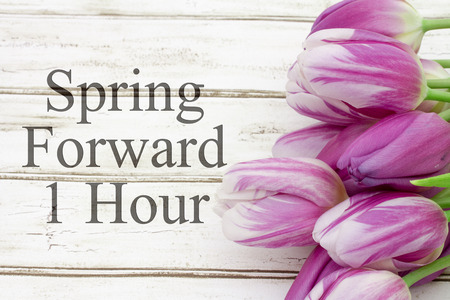 forward: Some tulips with weathered wood and text Spring Forward 1 Hour Stock Photo