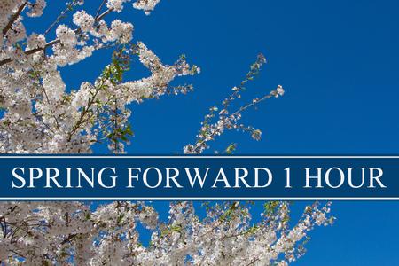 Een boom in volle bloei met blauwe hemel en de tekst Spring Forward 1 uur