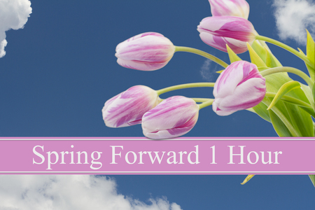 Some tulips with blue sky and text Spring Forward 1 Hour Stock Photo