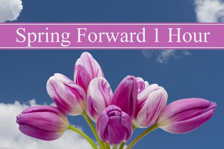 spring: Algunos tulipanes con el fondo azul y texto Primavera Adelante 1 Hora Foto de archivo